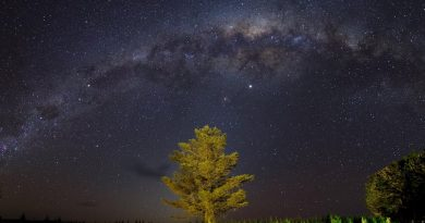 Imagen de la Vía Láctea tomada desde Nueva Zelanda